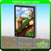 Rectángulo ligero al aire libre - rectángulo ligero del movimiento en sentido vertical - visualización - haciendo publicidad