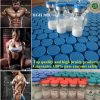 Hormone de peptides de Somatotropin de pureté des ventes directes 99.5% d'usine pour l'évolution de muscle
