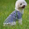 L'animal familier vêtx les produits sans col d'animal familier de coton de piste