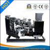generador del diesel del regulador de Smartgen del motor de 9kw Yangdong