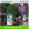 Pubblicità commerciale della visualizzazione di LED di colore completo P5.33 di Chipshow