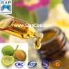 Aceite orgánico puro de la jojoba con la muestra libre