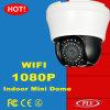 Mini appareil-photo d'intérieur d'IP PTZ de radio de la vision nocturne 4inch (PLV-HNC836IW)