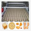 Chaîne de production complètement automatique pour le biscuit