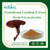 Extracto de Ganoderma Lucidum Anti-Radiação / Extrato de Cogumbo Reishi em pó 20: 1 Preço baixo