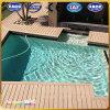 Suelo impermeable de la piscina de la fábrica profesional WPC