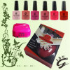 직업적인 High Quality UV Gel Nail Polish Kit 초보자용