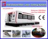 Systeem van Duitsland CNC van de Scherpe Machines van de Laser van de vezel het Ingevoerde
