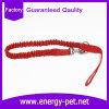 Vente en gros en nylon solide classique de laisse de crabot de corde de la Chine