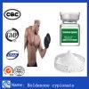 Boldenone Cypionate 분말 스테로이드 분말 주입 대담한 200 Boldenone 아세테이트