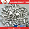 Pilz-Hauptkohlenstoffstahl-Höhlung-Niet/Vorhang-Niet