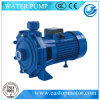Cpm-3 Gould Pumps para a agua potável com 380V Voltage