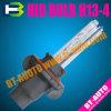 Bi-Xeno NASCOSTO/lampada flessibile/massima minima (H13-4)