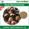 Выдержка каштана лошади Aescin или Escin