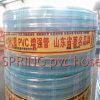 Boyau tressé de l'eau de PVC de jardin de meilleur choix bon marché