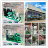 Générateur de gaz du kilowatt 500kw de la marque 250/centrale en bois célèbres gazéification de biomasse à vendre