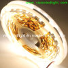 Luz de tira flexible de SMD 5050 LED (VS-F300M-12V-5050)