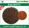 Polyphénols de la graine P.E. de raisin 40%-95%