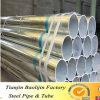 Tubulação de aço galvanizada alinhada PVC