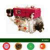 Motor diesel del motor diesel 8HP R180 de Changzhou