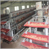 O equipamento de cultivo das aves domésticas mergulha a gaiola da galinha para Nigéria