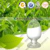 Acide Protocatechuic d'extrait de Salvia Miltiorrhiza de grande pureté