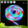 RGB LED Neon Neon Flexible Souple avec Seven Modification Des Couleurs
