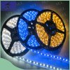최신 Sale Low Voltage 12V LED Strip Light