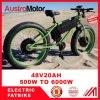 سمين كهربائيّة درّاجة درّاجة, [إ] درّاجة مع [هي بوور] [3000و] [6000و] درّاجة سمين [إبيك]
