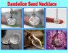 Сделайте ожерелье желания с семенами одуванчика,