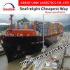 O remetente de confiança proporciona o serviço rápido e seguro de China a Los Angeles, Ca do transporte do oceano (FCL/LCL)
