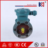 Yb3 Series Three Phase 15kw Explosion Proof Motor