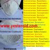 Sell를 위한 신진 대사 Androgenic Steroids Trestolone Acetate (7 알파 메틸 19 nortestosterone)