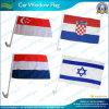 Natioal سيارة / سيارات اقتصادية نافذة العلم (NF08F01017)