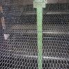 1 '' rete metallica del PVC/collegare di pollo esagonali rivestiti