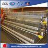 Geflügel-Geräten-Batterie-Rahmen-Huhn-Rahmen für längeren Gebrauch
