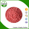 Fertilizzante composto superiore 48% NPK 16-16-16 di Angricultural