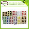 Escudo Forma Colorido Etiqueta Etiqueta adhesiva