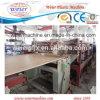 Machine extérieure d'extrusion de panneau de mousse de croûte de PVC de vente chaude