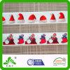 Cinta impresa el elástico del patrón del festival del traspaso térmico del diseño de la Navidad