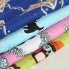 tissu de la flanelle 100%Cotton pour des pyjamas avec le dessin animé estampé (C20X10/40X42)