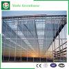 De Serre van het Glas van het Profiel van het Aluminium van de landbouw