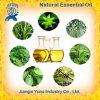 Aceites Esenciales chinos Flavors and Fragrances