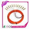 Pigtail ótico de 12 núcleos da fibra Multi-Mode do Sc