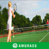 Manufacturer/Supplier profissionais de Tennis Basketball Artificial Grass (AN-20L)