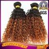 비꼬인 컬 인도 사람의 모발 Ombre 머리