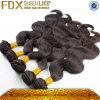 Capelli umani 100% di Remy del tessuto brasiliano dei capelli (FDXI-BB-003)