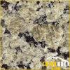Azulejo amarillo de la losa de la pared del suelo del granito (Giallo Vermont)