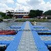 Sich hin- und herbewegendes Plastikdock durch HDPEponton-Treffen-Cer-Standard