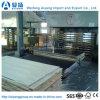 a madeira e a película de 1220X2440mm China enfrentaram a madeira compensada